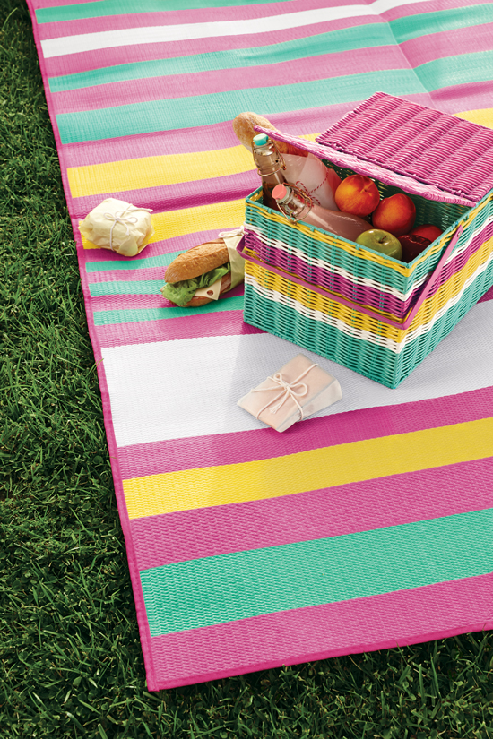 Oh Joy for Target Picnic Basket and Mat