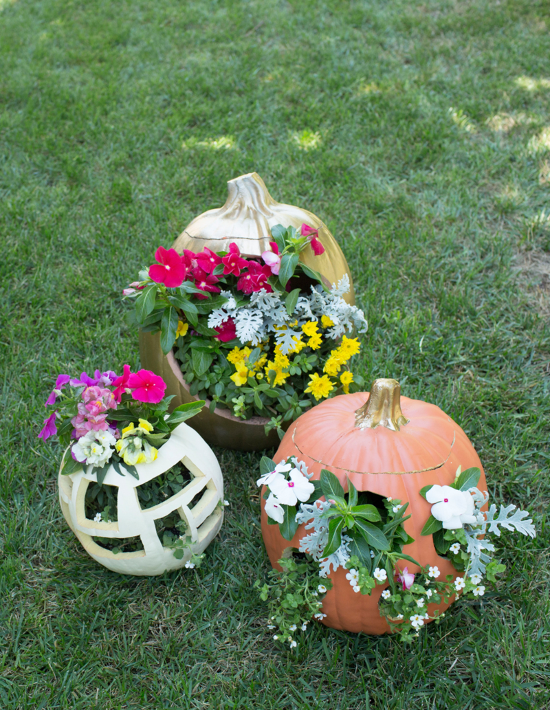 Pumpkin Floral Planter DIY