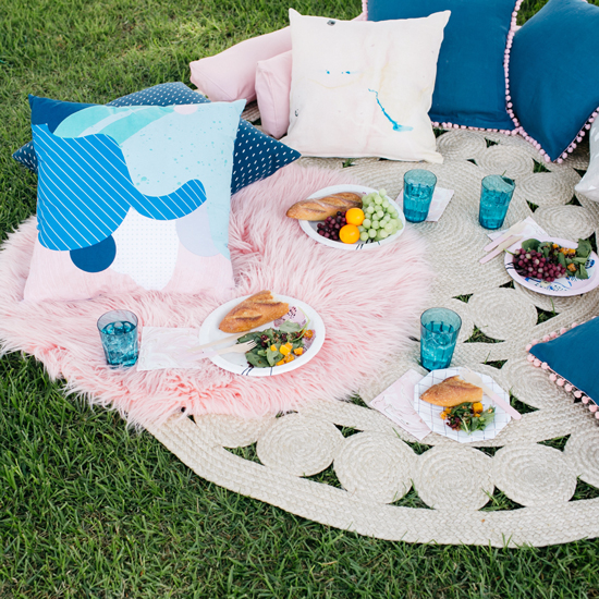 a fancy pink & blue picnic