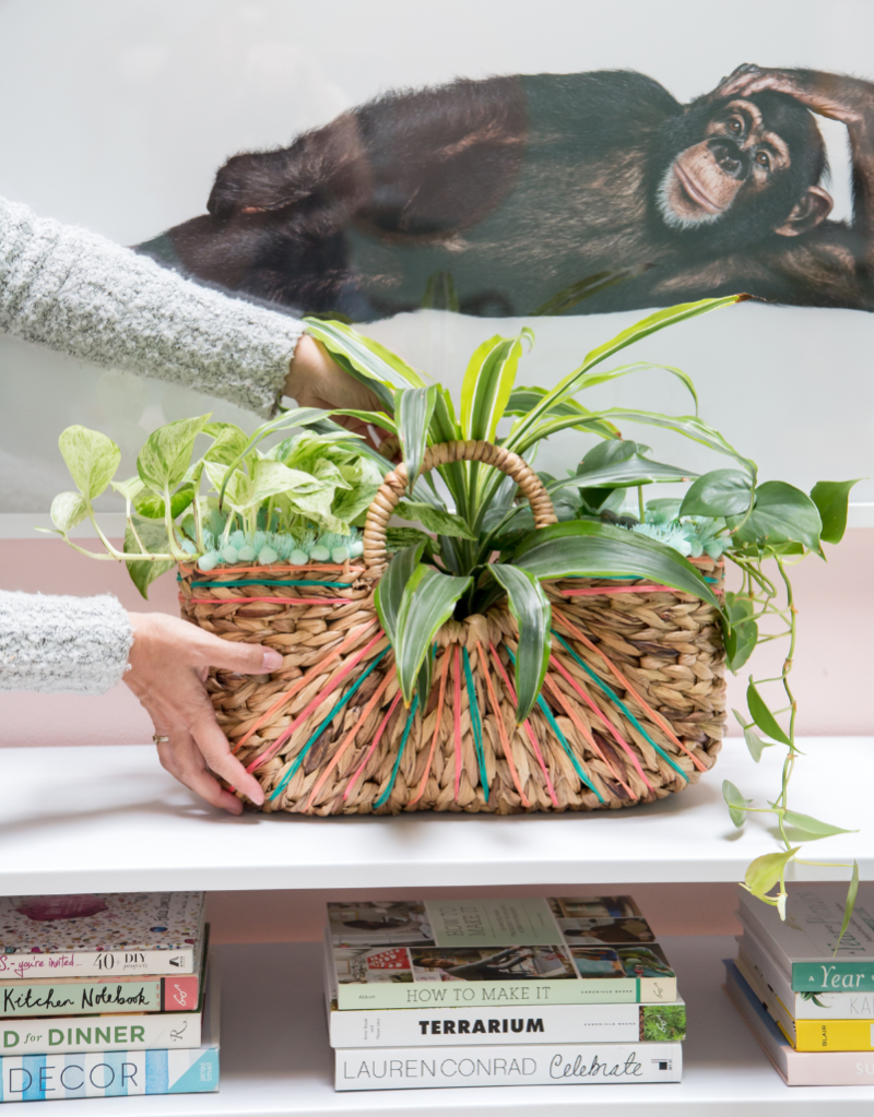 How To Make A DIY Basket Planter! / Oh Joy!