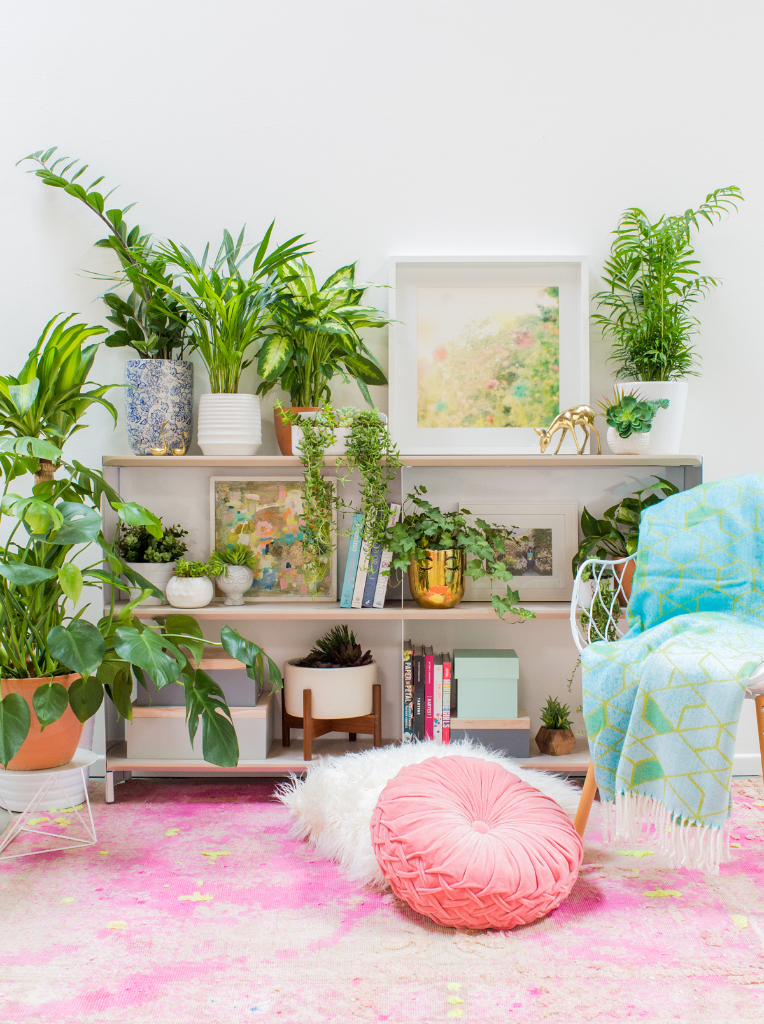 How to Decorate with Plants... / via Oh Joy!