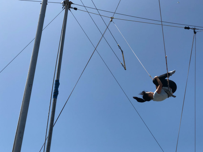 Julia's 3/300: Flying Trapeze! // via Oh Joy!
