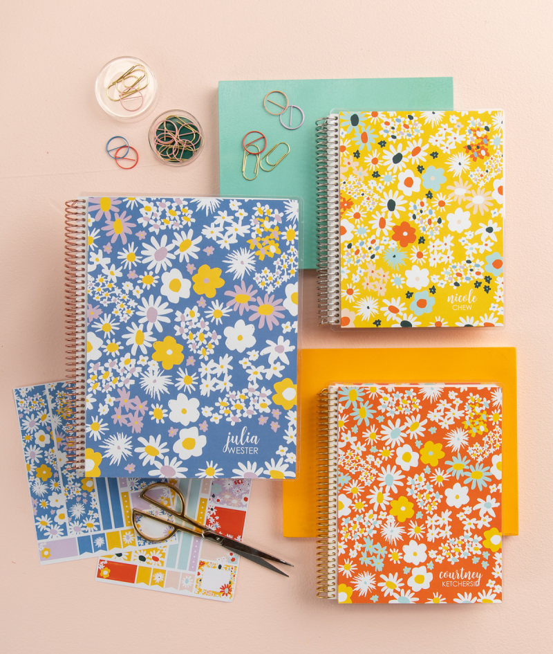 Oh Joy for Erin Condren Disco Daisies